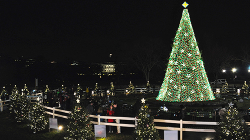 many can remember growing up and anticipating the lighting of the national christmas tree whether witnessing it on tv or having a first hand experience in